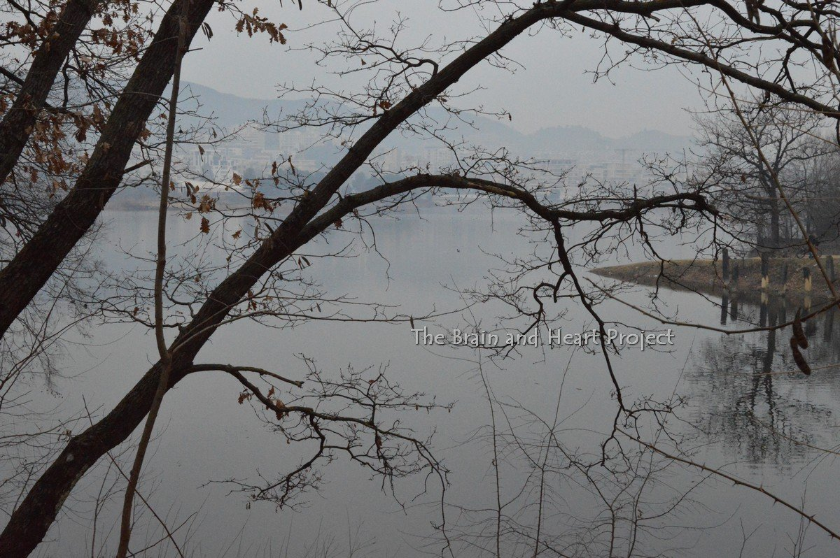 Lago Artificiale Tirana: Un pomeriggio di Gennaio