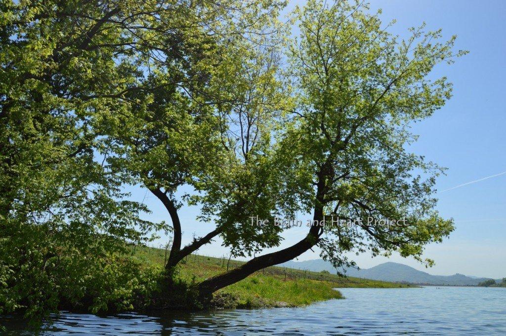 188Liqueni Lake 17 Aprile 2016