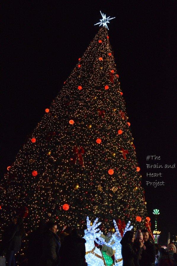 Skandemberg Square a Natale